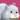 Animal Babies Premium Badge Album Badge