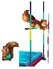 Pogo Mini Item: Squirrel Vault