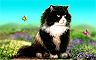 Claire Hart - Case 62, Part 3: Little Cat Feet - The Jasper's Jinx Badge