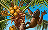 EP331: Palm Panic - Palm Panic Badge