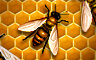 Claire Hart - Case 76, Part 3: Runaway Driver - The Bee In Your Bonnet Badge