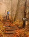 Vanishing Trail Mix-n-Match Badge