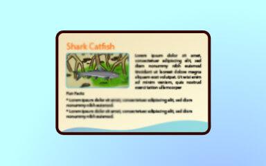 Quinn's Aquarium Mangrove Tank Part 2 Badge