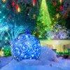 Claire Hart 2 - Case 12, Episode 2: Falling Snow - Holiday Garden Badge