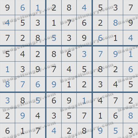 Pogo Daily Sudoku Solutions: June 13, 2019