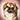 Dog Set Mix-n-Match Chat Icon