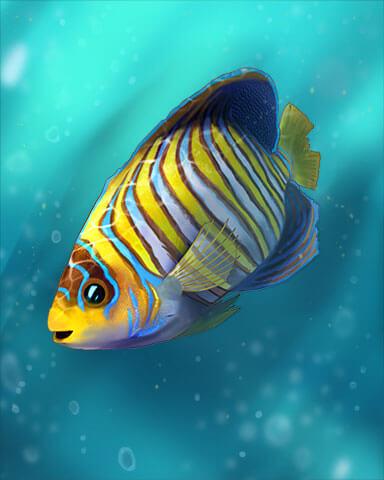 Great Barrier Reef Badge
