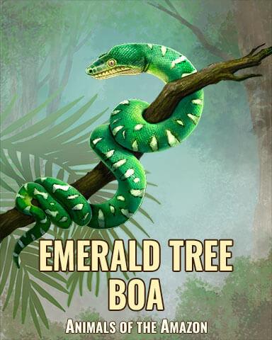Amazonian Animals Badge