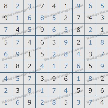 Pogo Daily Sudoku Solutions: December 13, 2020
